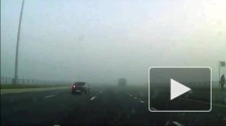 На трассе в Голландии неимоверный хаос: в тумане столкнулись 150 машин, есть погибшие