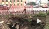 Петербургский гейзер. На Исполкомской прорвало трубу с горячей водой