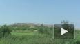 Гринпис: вода у свалки на Волхонском шоссе опасна