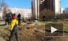 Тяжелый случай: петербургские бомжи защищают свой мусор от коммунальных служб