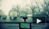 ДТП в Санкт-Петербурге: на Полюстровском пострадали два человека, в Обухово иномарка снесла ограждение