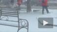 В первые дни Нового года Петербург завалило снегом