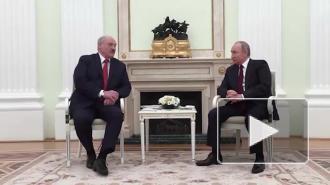 Путин и Лукашенко не обсуждали слияние России и Белоруссии