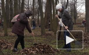 Сотрудники Комитета по строительству Петербурга приняли участие в общегородском субботнике