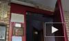 Жуткие новости из Гатчины: мигрант изнасиловал молодую девушку
