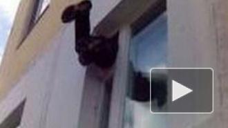 В Петербурге 25-летний мужчина задержал в своей квартире вора-форточника