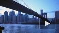 В Нью-Йорке обрушился мост, есть пострадавшие