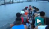 Петербург может стать местом проведения гонок китайских лодок-драконов