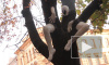 """На Фестивале """"Арт Проспект"""" у деревьев выросли ноги и руки, на столбах появилась паутина, а из пней вылезли металлические человечки"""