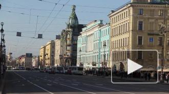 Магазины Mexx останутся в Петербурге несмотря на банкротство компании в Нидерландах