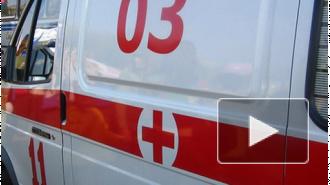 В маршрутке, которая попала в ДТП в Тосненском районе, пострадали 14 человек