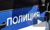 Трое дагестанцев напали на врача у больницы в Сестрорецке