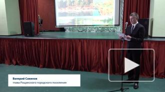 Глава Рощинского сельского поселения подвел итоги в поселкеза 2018 год