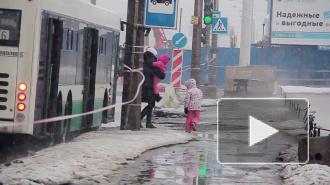 На Бухарестской улице прорвало трубу горячего водоснабжения, вода вытекала на проезжую часть