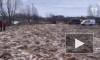 Видео: В Тверской области в реке нашли тело пропавшей 7-летней девочки