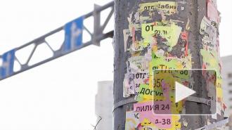 Петербуржцы возмущены рекламой борделей на столбах
